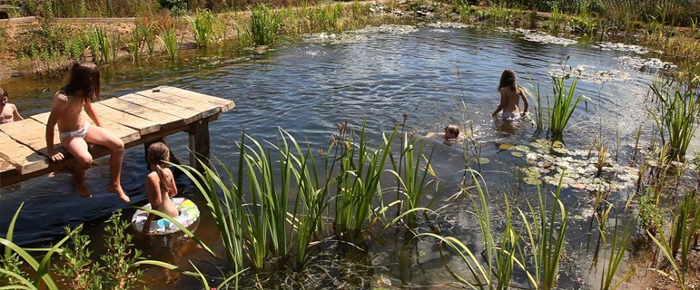 Build a natural swimming pool