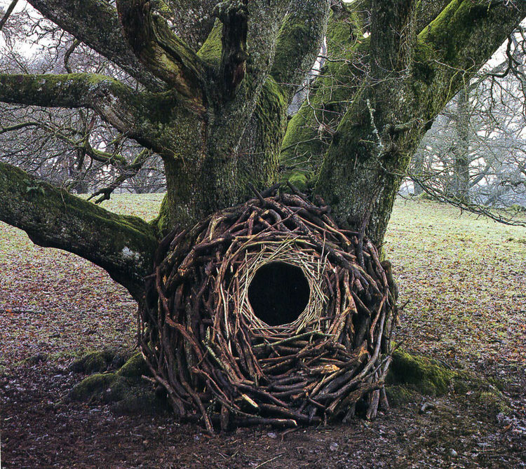 Rivers and Tides-andy-goldsworthy-6